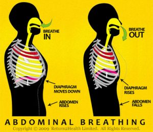 abdominal-breathing1