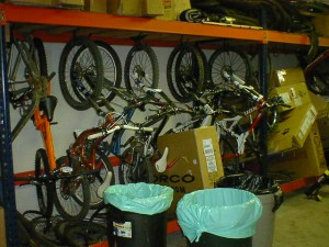 Which bike should I ride today!